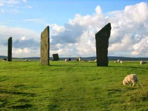 Standing Stones of Stenness with sheep
