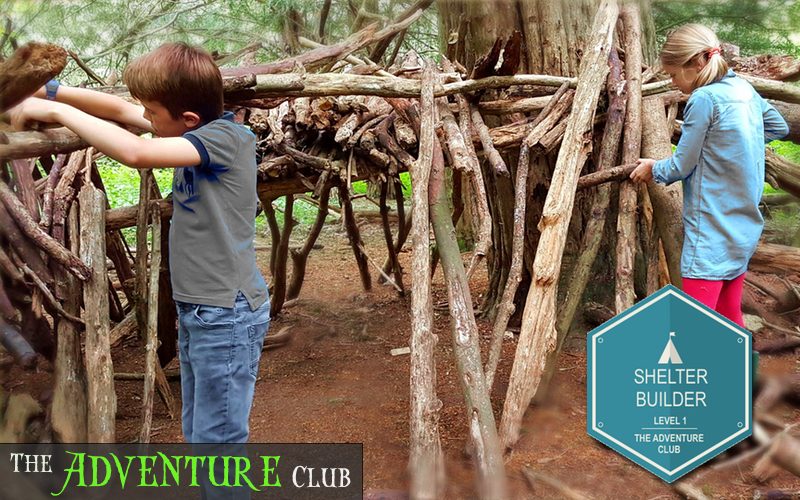 Boy and girl building natural shelter in the woods